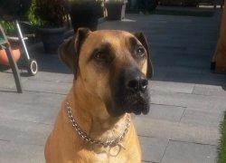 Jax(1)
